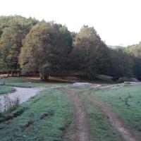 campo rotondo