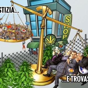 cannabis legale ma a quale prezzo