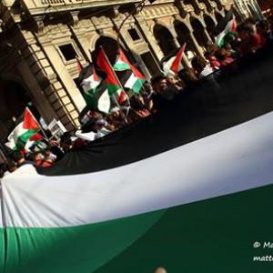 palestinasettembre2014