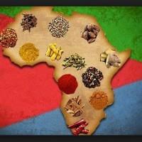 pranzo afrika-taverna